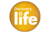048 Discovery Life